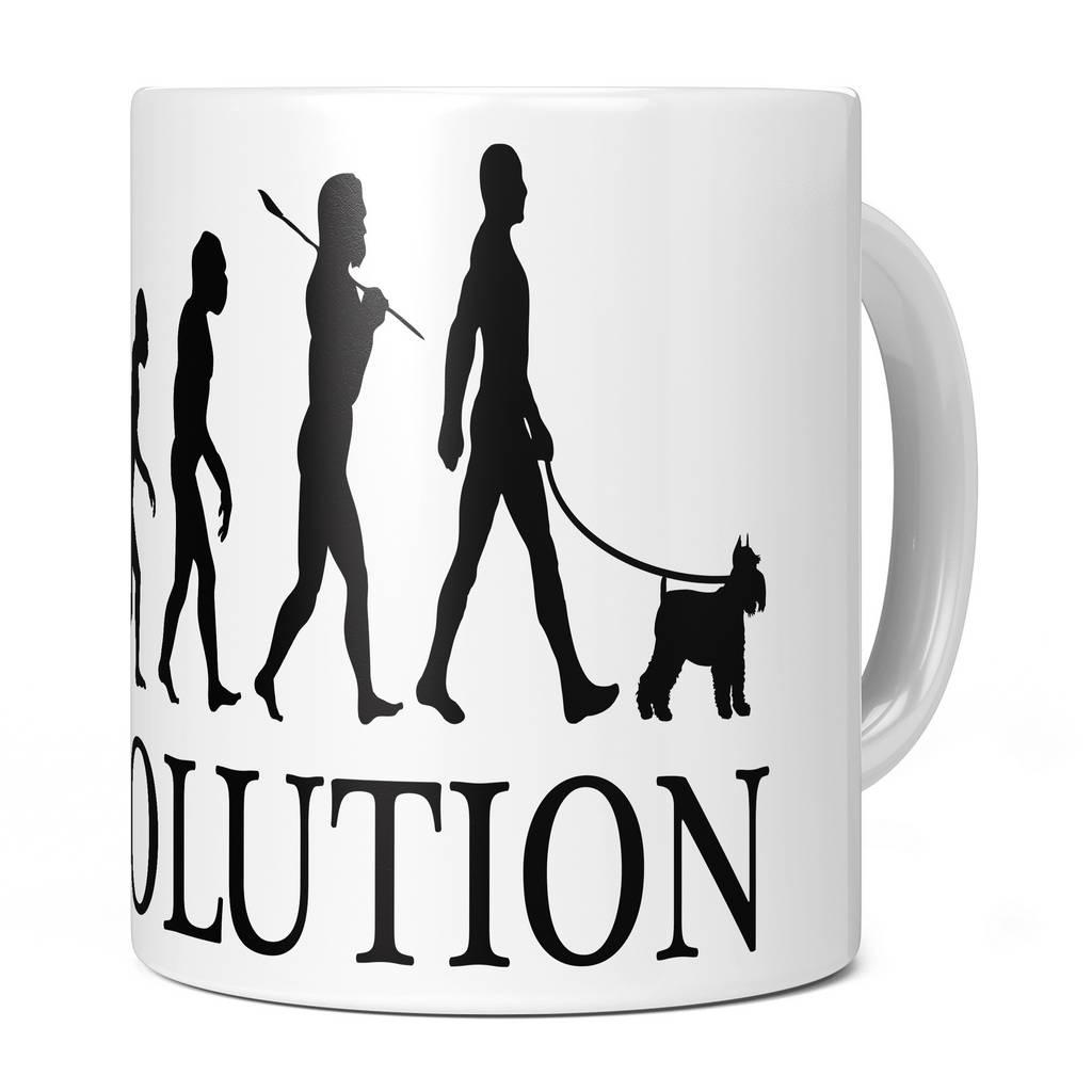 MINIATURE SCHNAUZER EVOLUTION 11OZ NOVELTY MUG