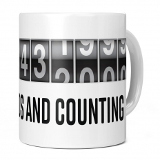 12TH BIRTHDAY 378432000 SECONDS AND COUNTING 11OZ NOVELTY MUG