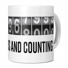 13TH BIRTHDAY 409968000 SECONDS AND COUNTING 11OZ NOVELTY MUG
