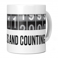 17TH BIRTHDAY 536112000 SECONDS AND COUNTING 11OZ NOVELTY MUG