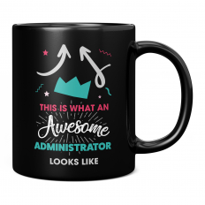 THIS IS WHAT AN AWESOME ADMINISTRATOR LOOKS LIKE 11OZ NOVELTY MUG