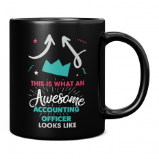 THIS IS WHAT AN AWESOME ACCOUNTING OFFICER LOOKS LIKE 11OZ NOVELTY MUG